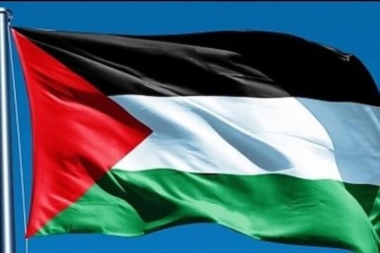 فنان فلسطيني يفوز بجائزة أفضل فيلم كرتوني قصير
