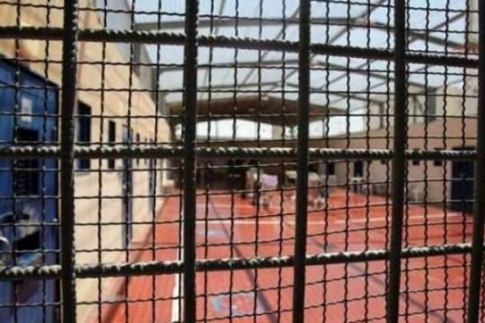 ثلاثة أسرى ينضمون إلى معركة الإضراب عن الطعام في سجون الاحتلال