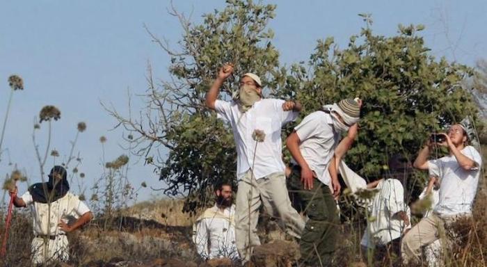 اصابة مواطن بكسور عقب ملاحقته من مستوطنين جنوب نابلس
