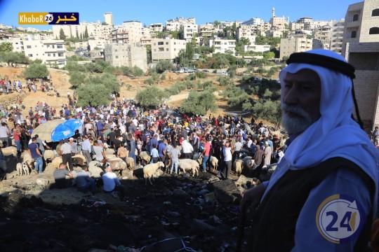 سوق الأضاحي في بيت لحم يشهد تواجدا كبيرا للمواطنين وحركة شراء ضعيفة
