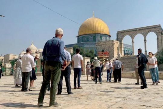 105 مستوطنين اقتحموا ساحات الأقصى بحماية شرطة الاحتلال
