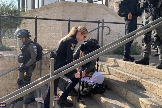 الاحتلال يعتقل 10 مقدسيين من باب العمود بينهم نساء وأطفال