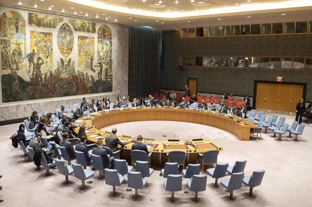 انتخاب البرازيل والإمارات عضوين غير دائمين في مجلس الأمن