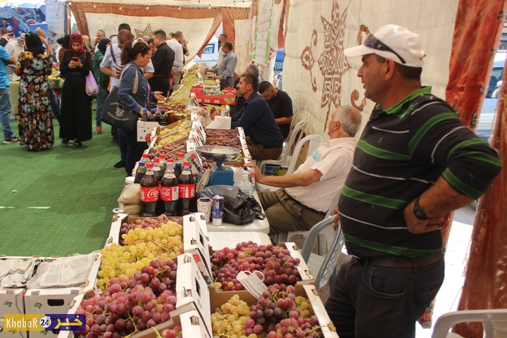 بالفيديو والصور.. سوق العنب في الخضر فرصة لترويجه ومساعدة المزارعين على بيعه