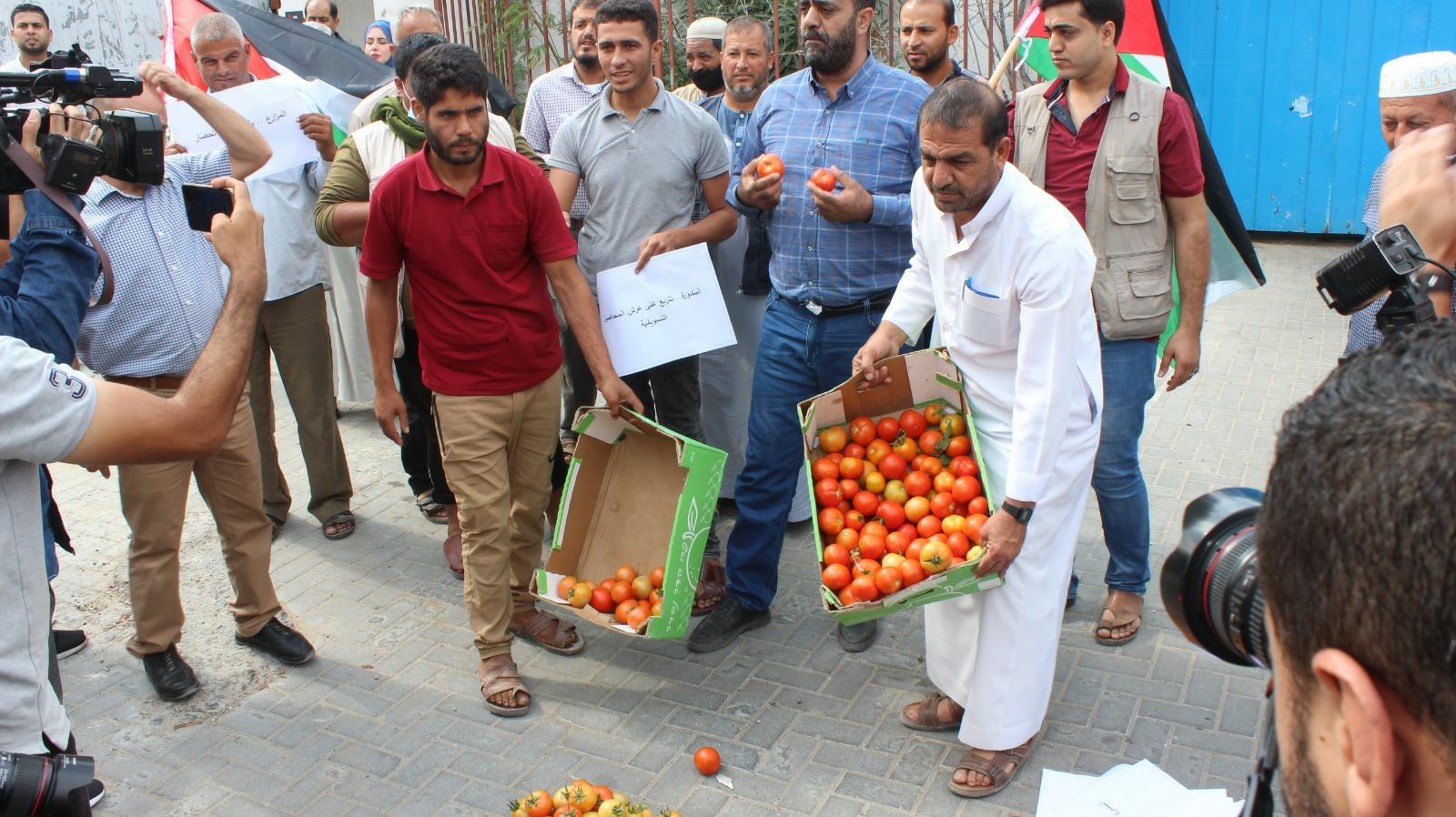"""المزارعون يحتجون على شروط الاحتلال """" لتصدير البندورة"""" في معبر """"كرم ابو سالم """""""